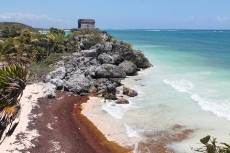 tulum-beach-ruins-seaweed